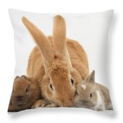 Rabbits Throw Pillow by Mark Taylor