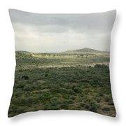 Texas Scenic Landscape Throw Pillow