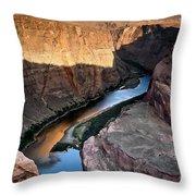 1118 Down River Throw Pillow