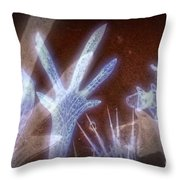 11288 Ghost Of Lost Souls Series 07-01 Throw Pillow
