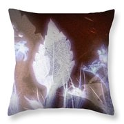 11291 Ghost Of Lost Souls Series 07-04 Throw Pillow