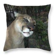 1153 - Mountain Lion Throw Pillow