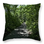 1174, Forest Path Throw Pillow