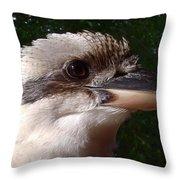 Australia - Kookaburra Poses Throw Pillow