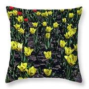 Flower Carpet. Throw Pillow