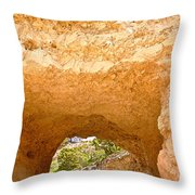 Grand Canyon Experience Series Throw Pillow