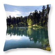 Nature Scene Throw Pillow