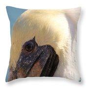 Pelican Up Close Throw Pillow