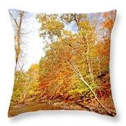 Pennsylvania Stream In Autumn Throw Pillow