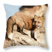 Red Tailed Fox Throw Pillow