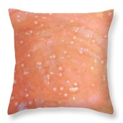 12. Speckled Pink And White Glaze Painting Throw Pillow