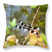 12 Spotted Skimmer Dragonfly 2 Throw Pillow