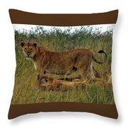 Tanzania Throw Pillow