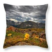 12000 Foot Flower Throw Pillow