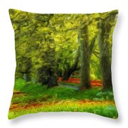 Nature Pictures Of Oil Paintings Landscape Throw Pillow