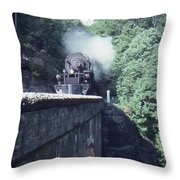 1218 At Mill Creek Throw Pillow