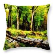 Landscape On Nature Throw Pillow