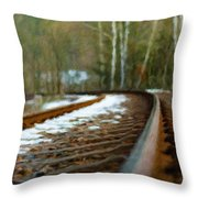 Types Of Landscape Nature Throw Pillow