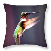 1257-006 - Ruby-throated Hummingbird Throw Pillow