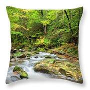 1266 Great Smoky Mountain National Park Throw Pillow