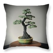 #128 Cloth Wrapped Wire Tree Sculpture Throw Pillow