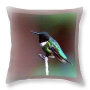 1281 - Hummingbird Throw Pillow