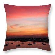 13- Crimson Dream Throw Pillow