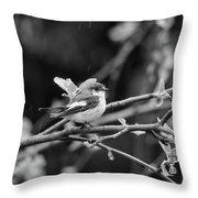 European Pied Flycatcher Throw Pillow