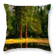 Landscape Poster Throw Pillow