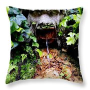 Public Fountain In Palma Majorca Spain Throw Pillow