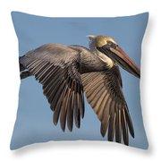 Beautiful Pelican Throw Pillow
