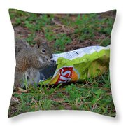 14- Chip Lovin' Squirrel Throw Pillow