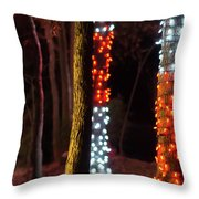 Christmas Season Decorations And Lights At Gardens Throw Pillow