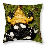 Darwins Frog Throw Pillow