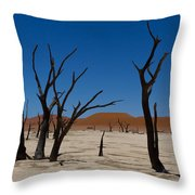 Dead Vlei Throw Pillow
