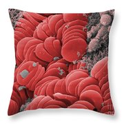 Human Red Blood Cells, Sem Throw Pillow