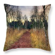 Landscape D Cc Throw Pillow