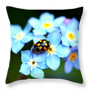14 Spot Ladybird Throw Pillow