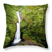 1418 Bridal Veil Falls Throw Pillow