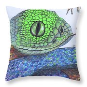 142 - So Far, So Good Throw Pillow