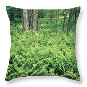 146113 Frens In Pisgah Nat Forest H Throw Pillow