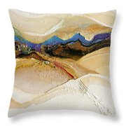 147 Throw Pillow