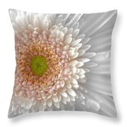 1475-004 Throw Pillow