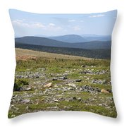 Alpine Tundra Throw Pillow