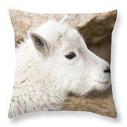 Baby Mountain Goats On Mount Evans Throw Pillow