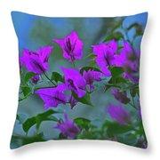 15- Bougainvillea Throw Pillow