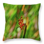 15- Dragonfly Throw Pillow