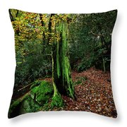 Fontainebleau Forest Throw Pillow