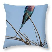 Lilac Breasted Roller 2 Throw Pillow