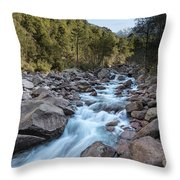 Slow Shutter Photo Of Figarella River At Bonifatu In Corsica Throw Pillow